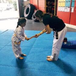 Taekwondo-Grading