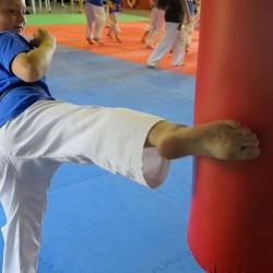 Zarli Kicking