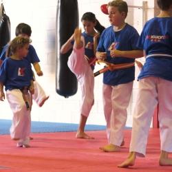 Gabby Kicking Taekwondo